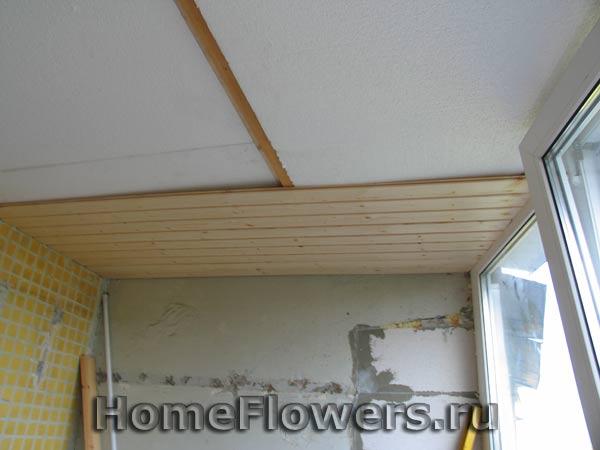 Утепление балкона - комнатные цветы и растения на homeflower.